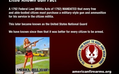 Little Known Gun Fact