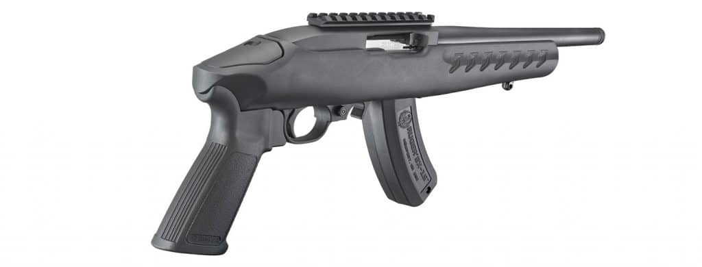 Ruger Charger Controls