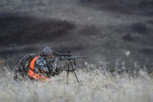 Bergara Rifles - hunter in the field