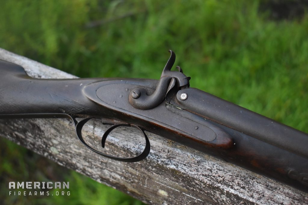 Best Tactical Shotguns - Musket