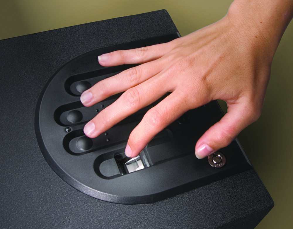 best biometric safes